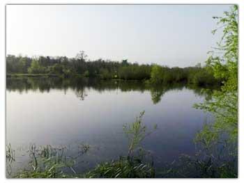 آب بندان - ایزدشهر
